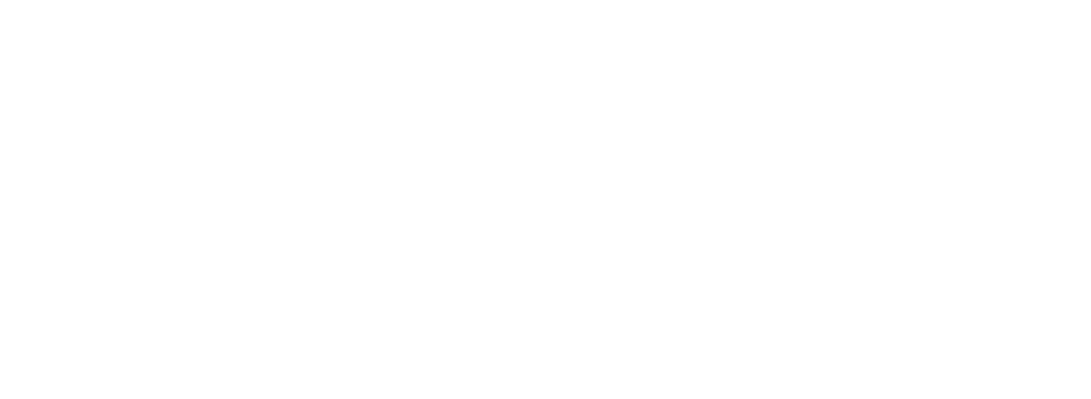 fortiss 60 projects